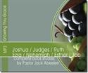 Picture of Joshua-Ruth, Ezra-Job MP3 On CD
